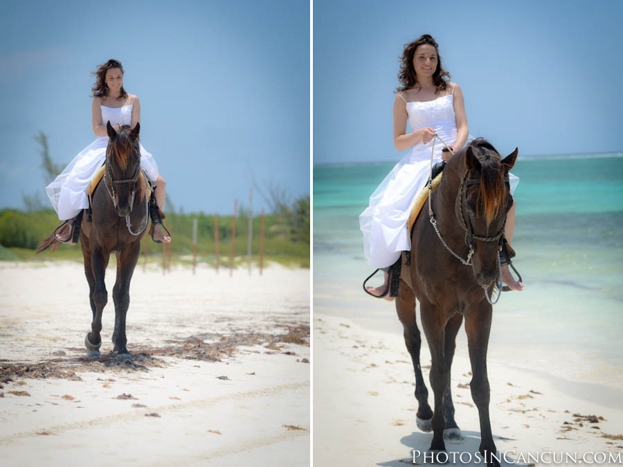 TTD with a Horse at the Beach